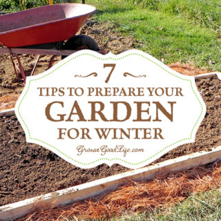 Organic harvest archives grow a good life - Prepare garden winter ...