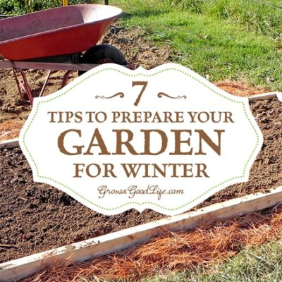 Taking the effort to clean up the vegetable garden beds in fall makes it very easy to begin growing the following spring. Tips to do before the snow flies.