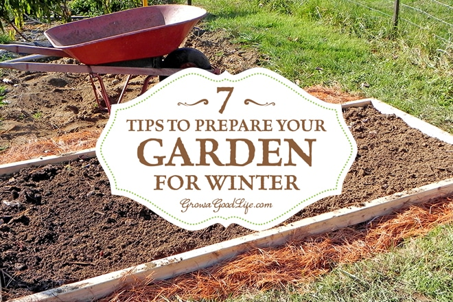 7 Tips to Prepare Your Garden for Winter, shared by Grow a Good Life