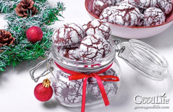 chocolate crinkle cookies in a gift jar