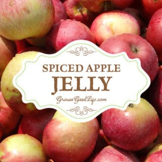 Spiced Apple Jelly Recipe (No Added Pectin)