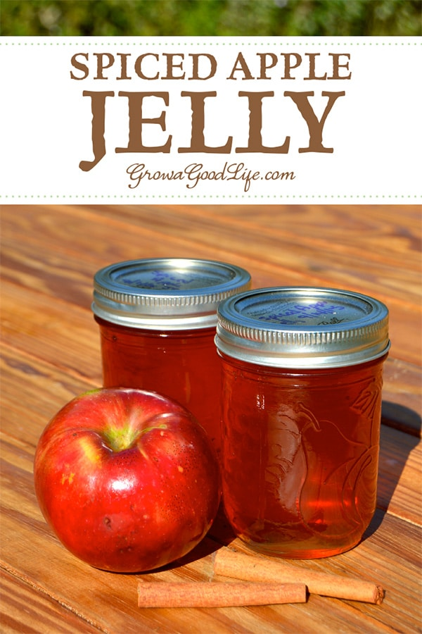 This spiced apple jelly recipe livens up the plain apple flavor with some traditional pairings including lemon juice, cinnamon, nutmeg and cloves.