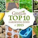 Top 10 Gardening Posts of 2015