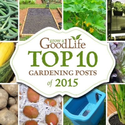 The end of the year is always a good time to reflect on the gardening articles that received the highest views, so I can see which posts you find the most helpful and useful. Evaluating the most popular posts helps me understand what kinds of information you are looking for and will shape the articles I write in the year to come as we share the journey to Grow a Good Life.