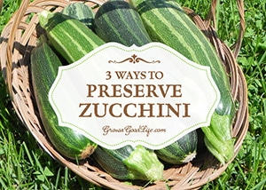 Zucchini and other Summer Squash are very prolific. It is easy to become overwhelmed by the harvest bounty collected from even a few plants. Here are three ways preserve it to help you deal with the abundant crop that just keeps on giving.