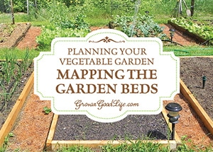 Before sowing a single seed, it is helpful to sketch a map of the garden so you know how many seedlings you will need, where they will be planted, and how you can keep each bed producing all through the growing season. Learn some things to consider when planning the garden.
