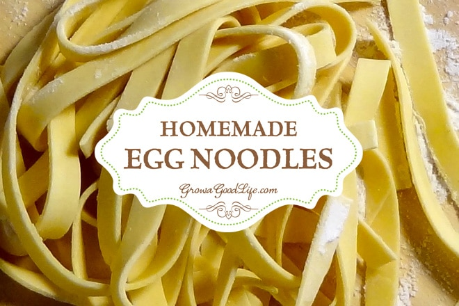 Three simple ingredients are all you need to make your own fresh, homemade egg noodles. If you keep a flock of chickens, egg noodles are a great way to use up your excess eggs.
