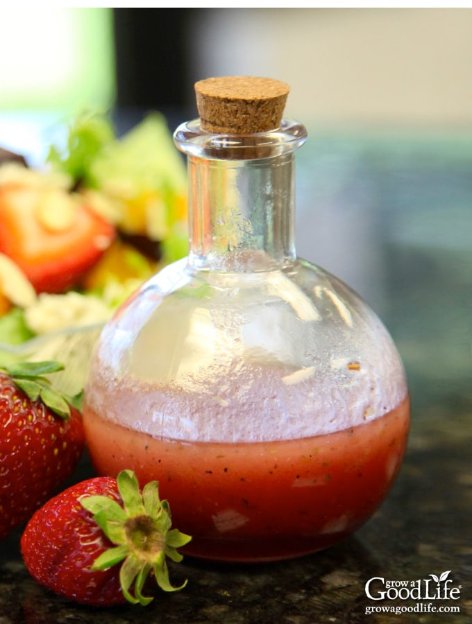 With just a few simple ingredients, this strawberry vinaigrette salad dressing is easy to whip up in a blender or food processor.