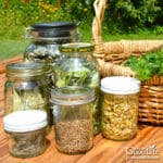 jars of dried herbs on a table