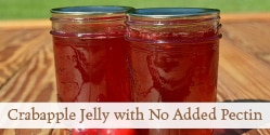 Crabapple Jelly with No Added Pectin