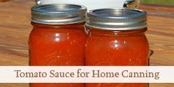 Seasoned Tomato Sauce for Home Canning