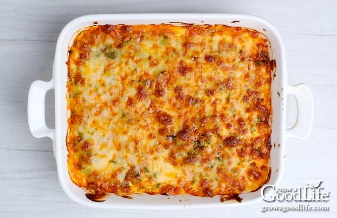overhead image of baked lasagna