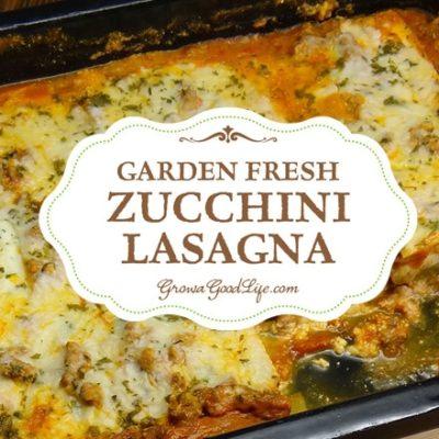 Garden Fresh Zucchini Lasagna
