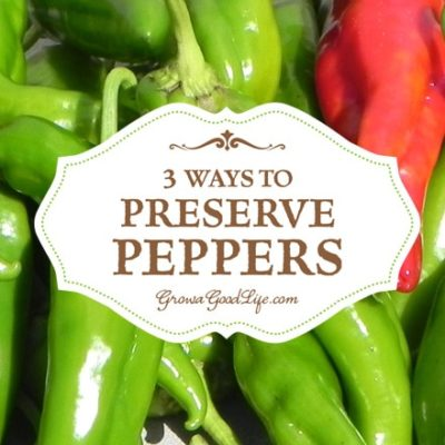 3 Ways to Preserve Peppers