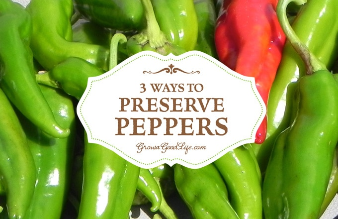 Take advantage of the summer bounty and preserve peppers to enjoy all year. If you don't grow your own peppers, consider purchasing in bulk from local growers at your farmer's market.