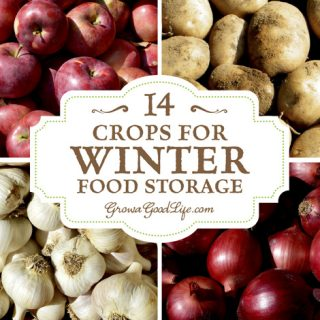 14 Crops for Winter Food Storage
