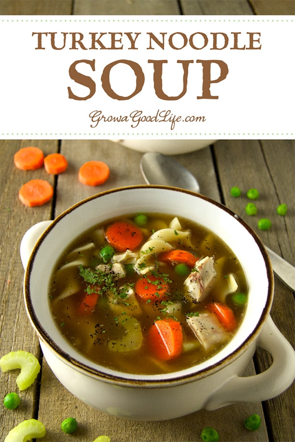 Whether you're combating a cold or seeking a comforting meal, this turkey noodle soup recipe is a perfect way to warm up on a chilly night.