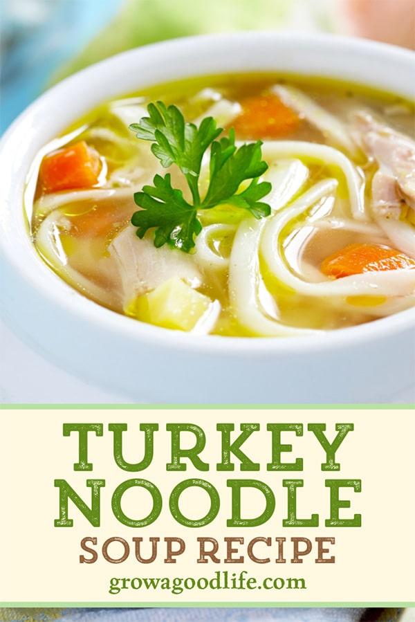 closeup photo of a bowl of turkey noodle soup