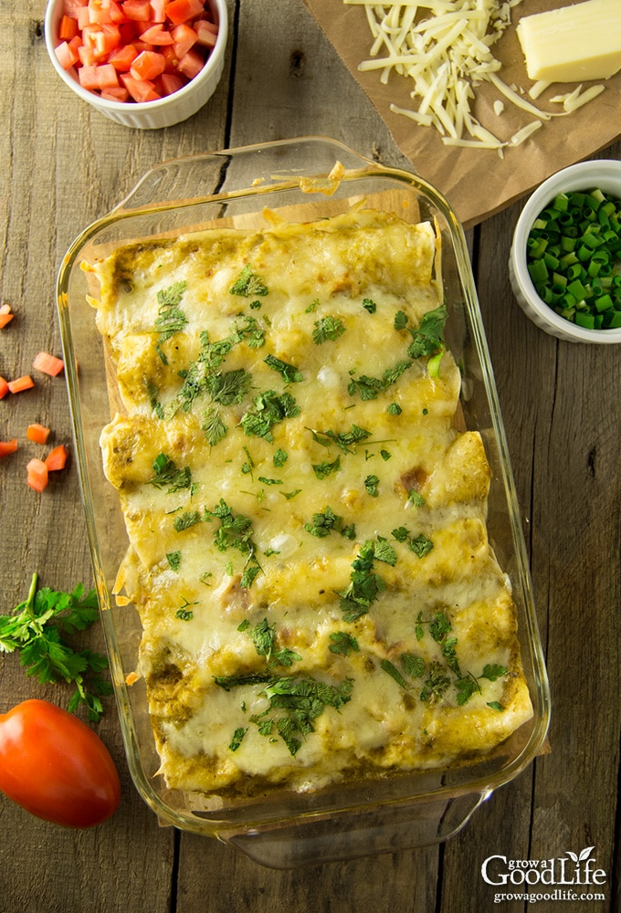 This chicken enchiladas with roasted green chile sauce recipe is a delicious dinner option when you're craving Southwestern style comfort food. The mellow spicy flavor of the Anaheim or New Mexico type peppers pairs well with shredded chicken and Mexican spices and cheese.