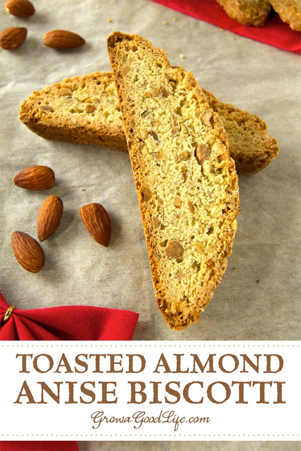 These toasted almond anise biscotti are bursting with toasted almonds and subtle anise flavor. They are ideal for dunking in a cup of coffee or tea.