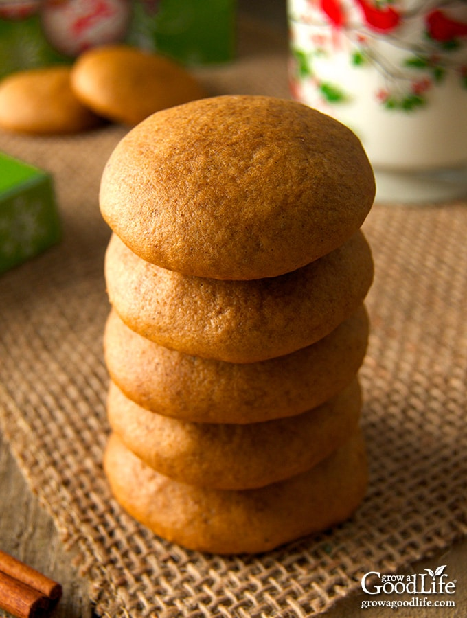 Don't let the plain appearance of these soft molasses cookies fool you. One bite will tingle your taste buds with the warm flavors of cinnamon, cloves, nutmeg, and molasses.