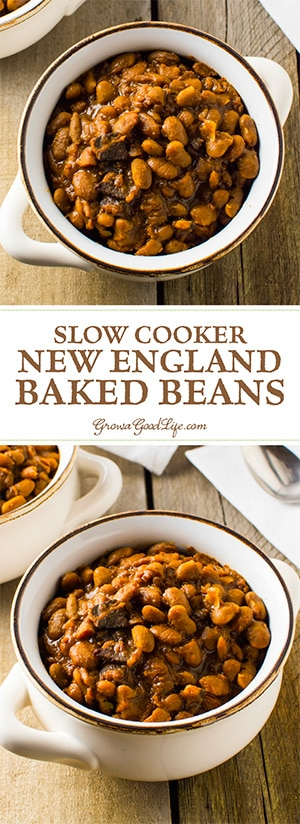 Skip the can and simmer your own homemade baked beans in your crock pot or slow cooker. With a few simple ingredients and time, you can make a delicious, slow cooked New England style baked bean dinner.