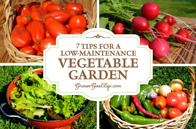 Grow a good life journey to a self sufficient life for Vegetable garden maintenance