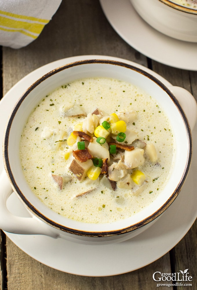 Creamy new england fish chowder for Creamy fish soup recipe