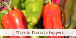 http://growagoodlife.com/preserve-peppers/