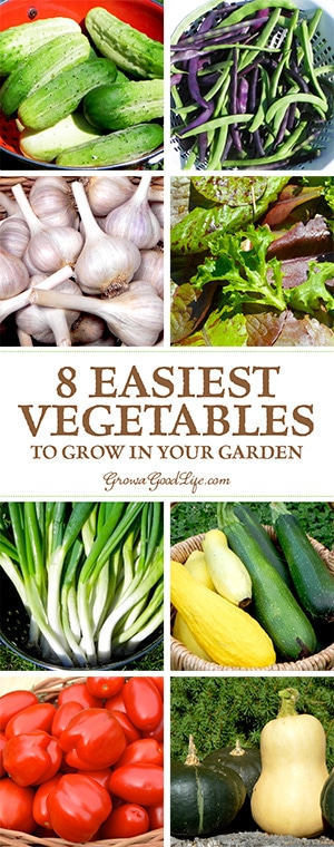 Merveilleux Do You Want To Grow And Preserve Your Own Vegetables, But Worry That You Won