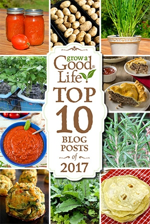 Your favorite articles about growing an organic vegetable garden, preserving the harvest, and enjoying garden fresh recipes!
