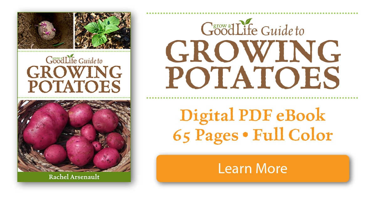 Whether you are striving for a few gourmet fingerling potatoes for fresh eating or growing a large crop for winter food storage, this book will show you how can grow your own, homegrown potatoes.