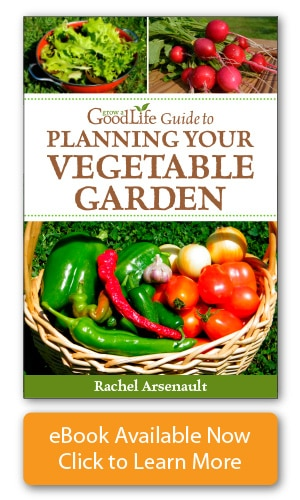 Whether you are new to growing your own food or have been growing a vegetable garden for years, you will benefit from some planning each year.