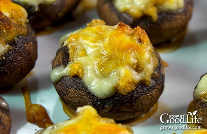 baked garlic and cheddar stuffed mushrooms in a baking pan