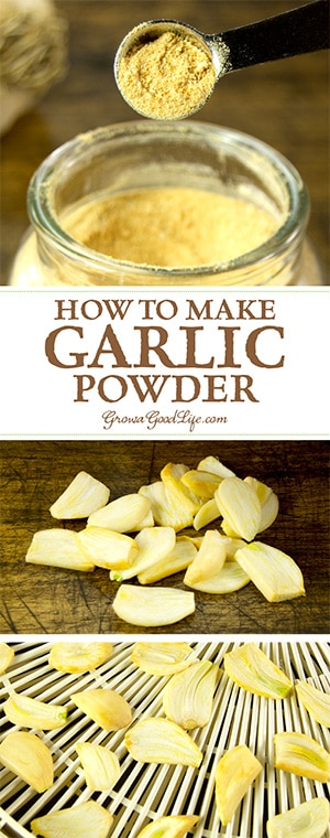 Make your own garlic powder by dehydrating and grinding garlic cloves. If you grow garlic or purchase in bulk and still have an abundance in storage come spring, it may be worth the effort to turn the excess into garlic powder before the cloves go bad.