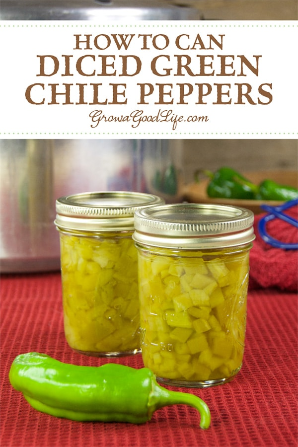 Home canned diced green chile peppers are handy to have available to add to your favorite chilies and Mexican inspired meals. The jars can be stored on dark pantry shelves, so they don't take up a lot of space in the refrigerator or freezer.