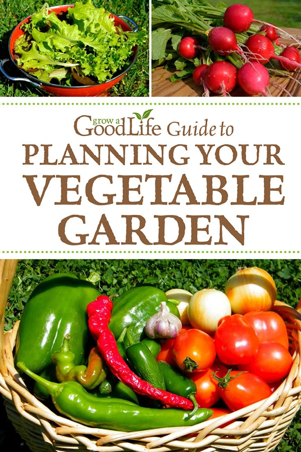 Grow a Good Life Guide to Planning Your Vegetable Garden will guide you through the steps to planning your vegetable garden.