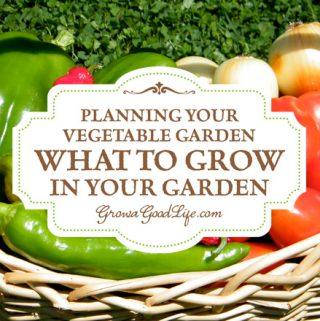 Vegetable Garden Planning: Choosing Vegetables to Grow