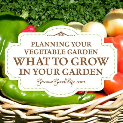 Vegetable Garden Planning: Choosing Vegetables to Grow