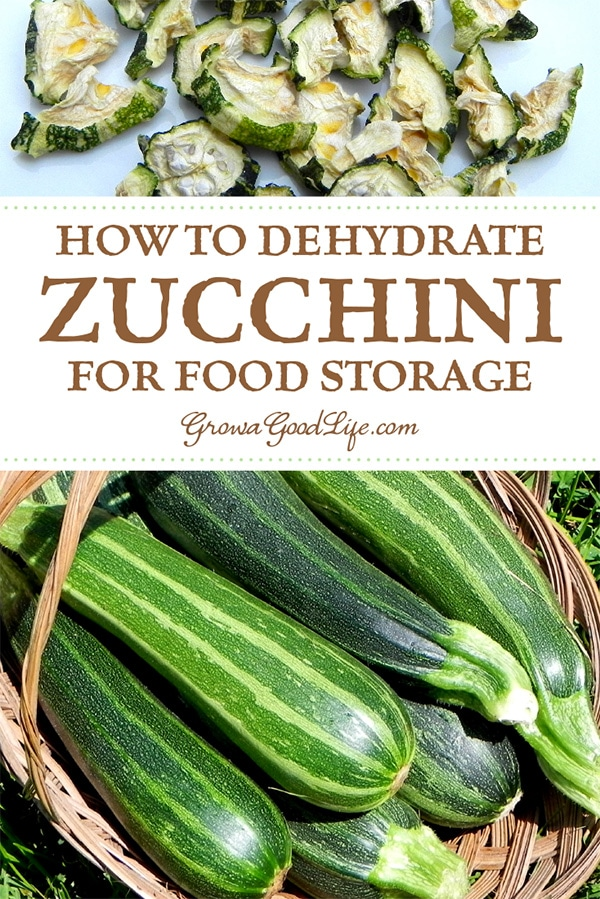 The summer vegetable garden is not complete without a few zucchini and summer squash plants. They are easy to grow and provide abundant harvests. Preserve that garden goodness by dehydrating zucchini.