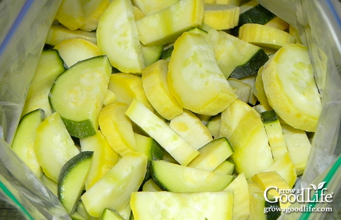 frozen zucchini and summer squash pieces in a freezer bag