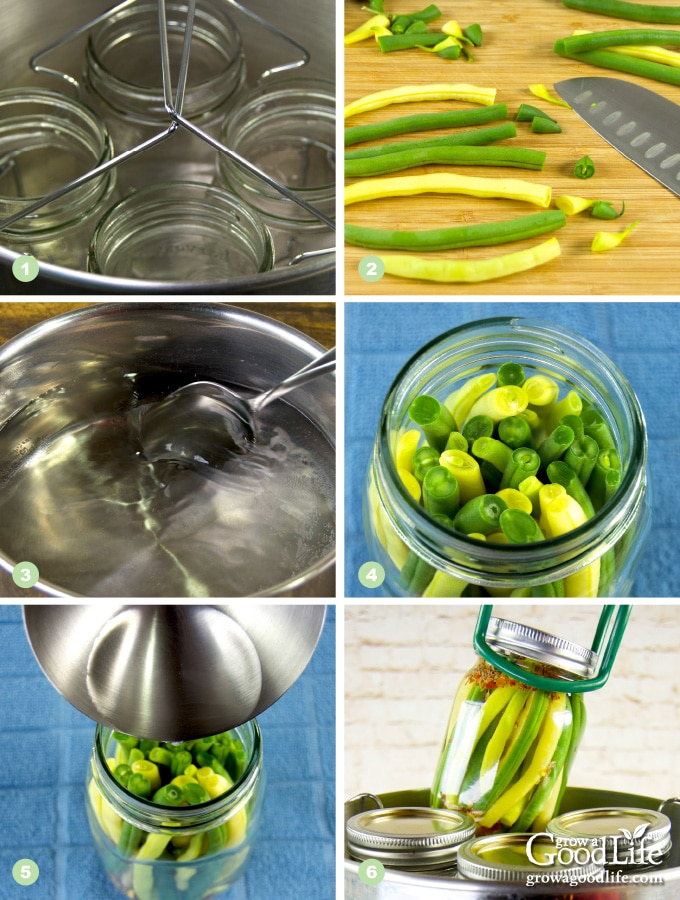 Steps to making pickled dilly beans