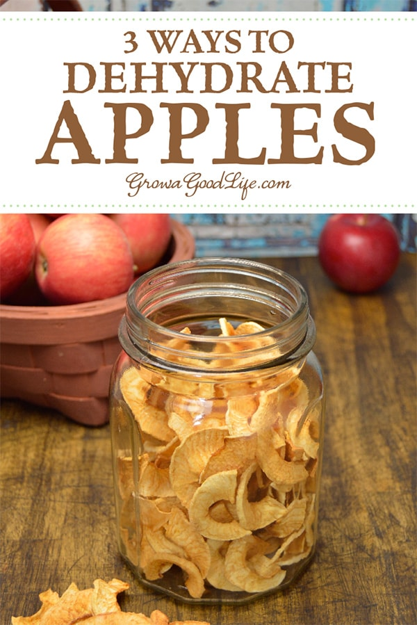 Drying apples is a great way to preserve fresh fall apples for food storage. Here are three ways to dehydrate apples, including air-drying, oven drying, and using a food dehydrator.
