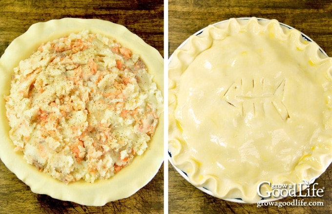 salmon pie filling