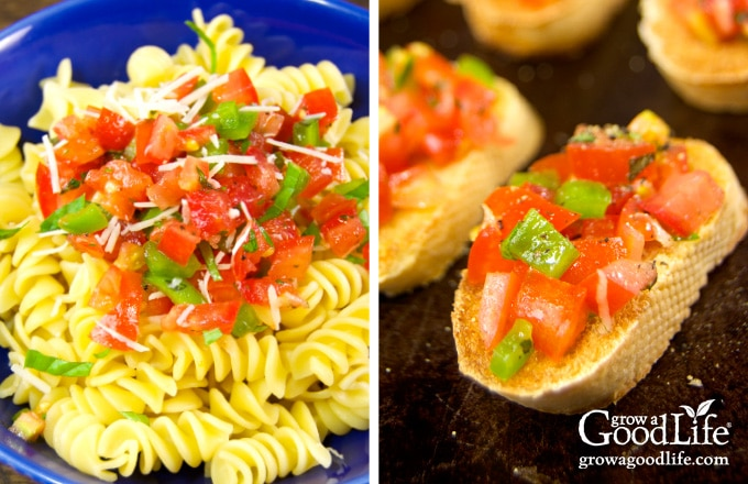 photo of pasta topped with salsa cruda