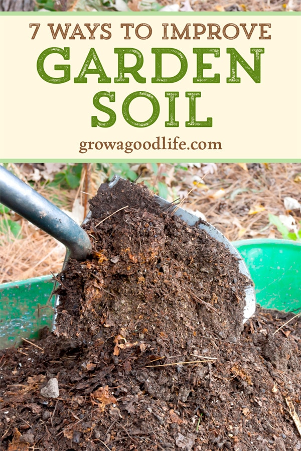 7 Ways to Improve Garden Soil