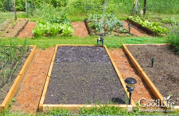 raised bed garden with walking paths in between