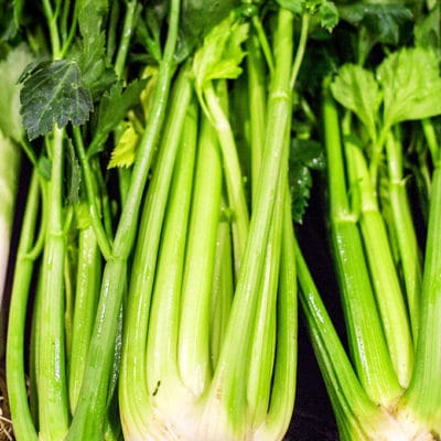 three bunches of freshly harvested celery