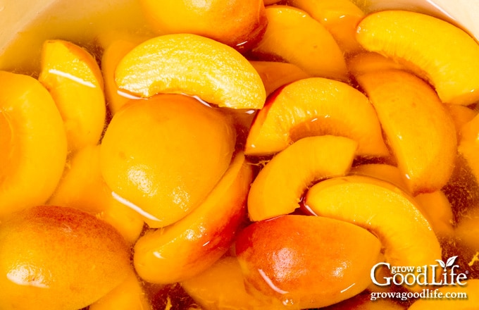 closeup of peach slices in canning syrup