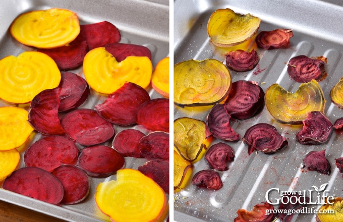 slices of beets on a baking sheet
